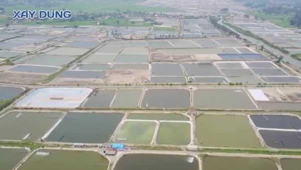 Nghệ An: Bất cập hạ tầng nuôi tôm